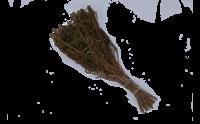 Банные веники и травы